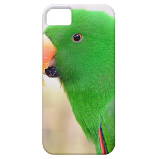 Green Parrot iPhone 5 Cases