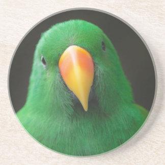 Green Parrot Coaster