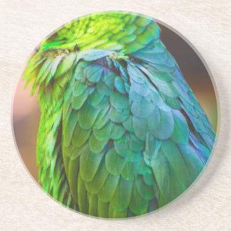 Green Parrot Beverage Coaster