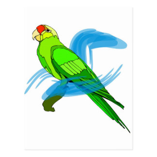 Green Parrot Feathers with Blue Swirls Postcard