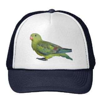 Green Parrot Mesh Hats