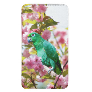 Green Parrot in Cherry Blossoms