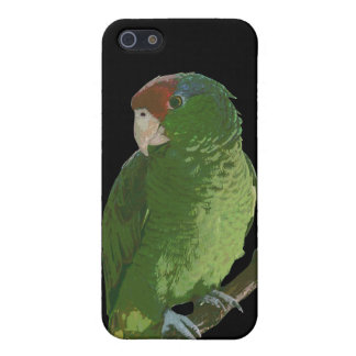 Green Parrot iPhone 5 Case