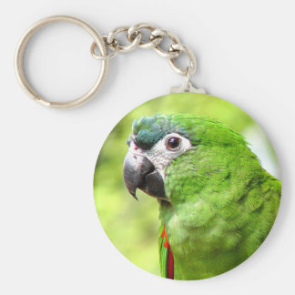 Green Parrot Keychain 2