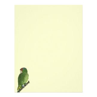 Green Parrot Letterhead Template