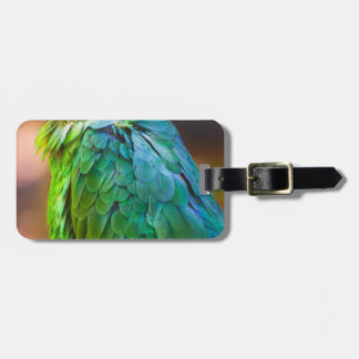 Green Parrot Tags For Luggage