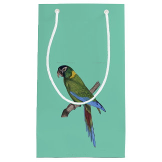 Green Parrot Macaw Painting Small Gift Bag