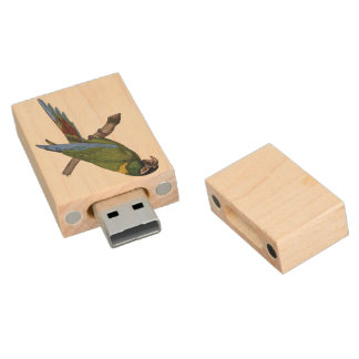 Green Parrot Macaw Painting Wood USB 2.0 Flash Drive