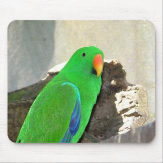 Green Parrot Mousepad