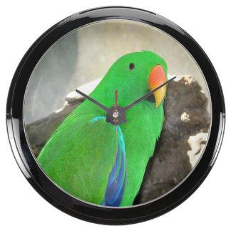 Green Parrot mousepad Aquavista Clock