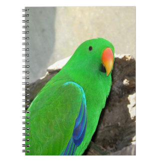 Green Parrot mousepad Note Book