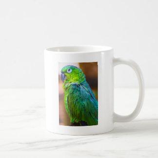 Green Parrot Mugs