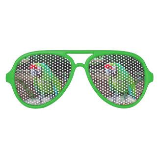 Green Parrot on Perch Aviator Sunglasses