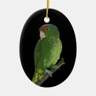 Green Parrot Double-Sided Oval Ceramic Christmas Ornament