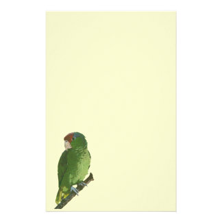 Green Parrot Stationery