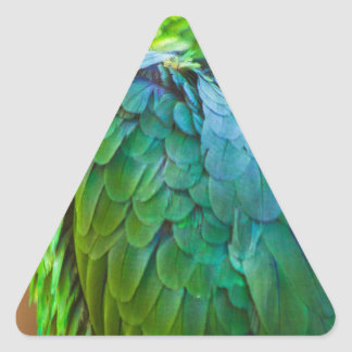 Green Parrot Triangle Sticker