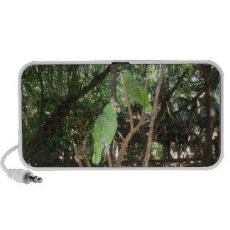 Green Parrots iPod Speakers