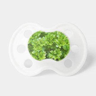 Green parsley herb pattern pacifier