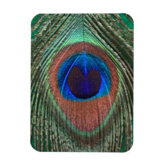 Green Peacock Feather Flexible Magnet