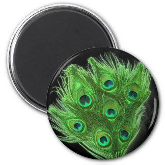 Green Peacock Feathers on Black Fridge Magnet