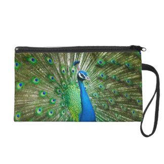 Green Peacock Satin Clutch Bag Wristlet