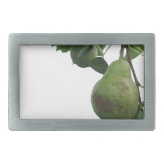 Green pears hanging on a growing pear tree belt buckle