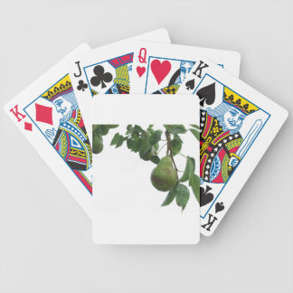 Green pears hanging on a growing pear tree bicycle playing cards