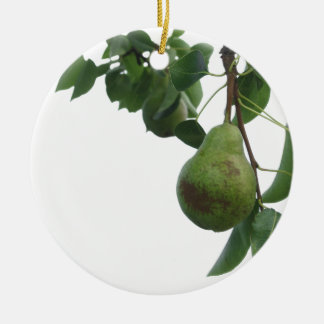 Green pears hanging on a growing pear tree ceramic ornament