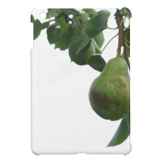 Green pears hanging on a growing pear tree iPad mini case
