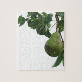 Green pears hanging on a growing pear tree jigsaw puzzle