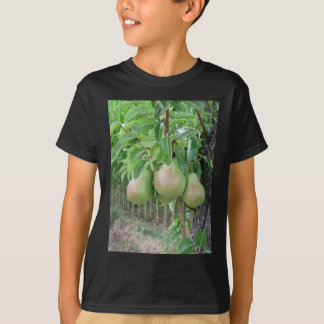 Green pears hanging on a growing pear tree T-Shirt