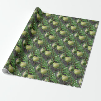 Green pears hanging on a growing pear tree wrapping paper