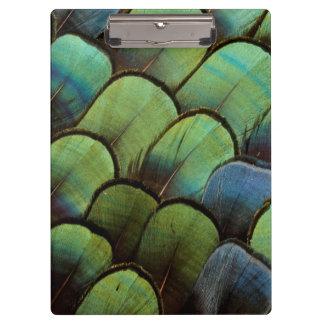 Green pheasant geather pattern clipboard