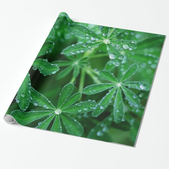 Green Pinwheels of Leaves with Raindrops Wrapping Paper