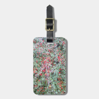 Green plant and red berry bag tag