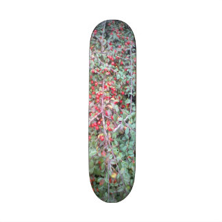 Green plant and red berry skate board