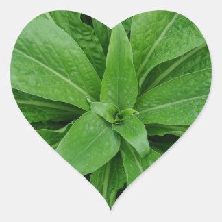Green Plant Heart Sticker