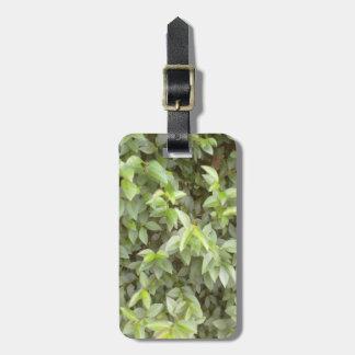 Green plant leaf luggage tag