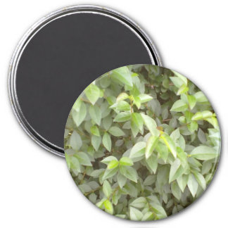 Green plant leaf 3 inch round magnet
