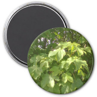 Green plant leafs 3 inch round magnet