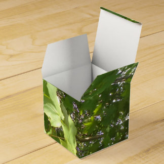 Green plant leafs party favor boxes
