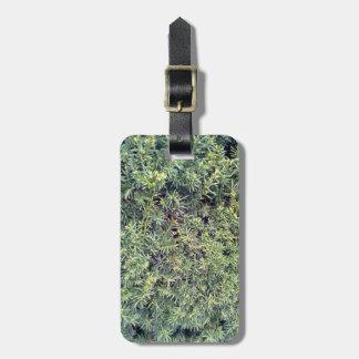 Green plant luggage tag