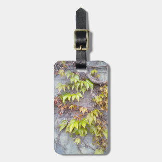 Green plant on a stone wall luggage tag