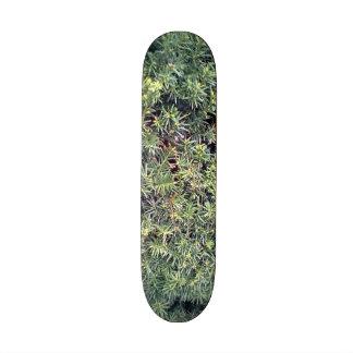 Green plant skateboard decks