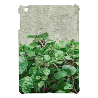 Green Plants Against Concrete Wall Cover For The iPad Mini
