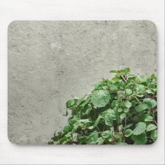 Green Plants Against Concrete Wall Mouse Pad