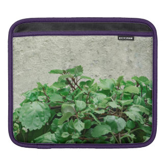 Green Plants Against Concrete Wall Sleeves For iPads
