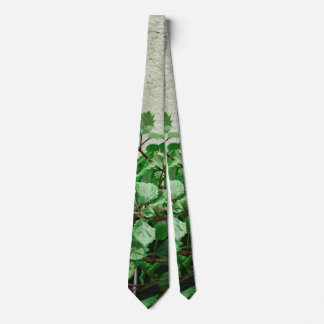 Green Plants Against Concrete Wall Tie