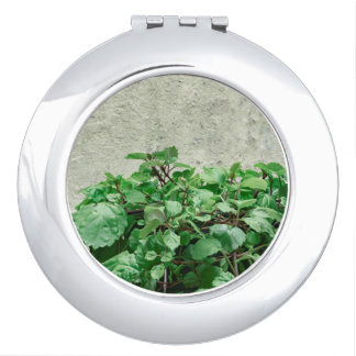 Green Plants Against Concrete Wall Travel Mirror