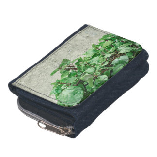 Green Plants Against Concrete Wall Wallet